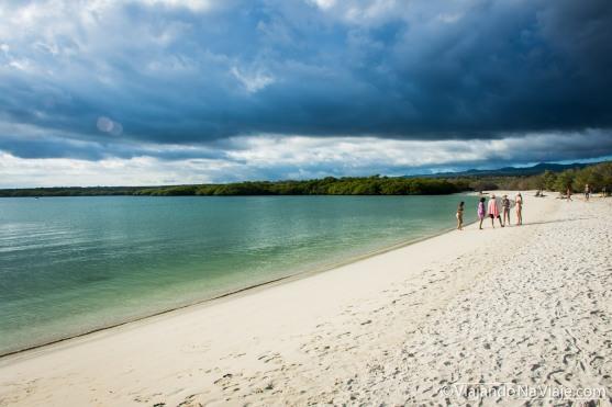 """Serie: Galapagos Experience 2017 // Fotos y Edición: Felipe """"Pipo"""" (viajandonaviaje.com) // Tortuga Bay, Santa Cruz Island"""