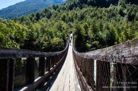 """Serie: Descubriendo Aysén // Fotos y Edición: Felipe """"Pipo"""" (viajandonaviaje.com) // P.N. Queulat Puente de acceso al sendero Mirador Glaciar"""